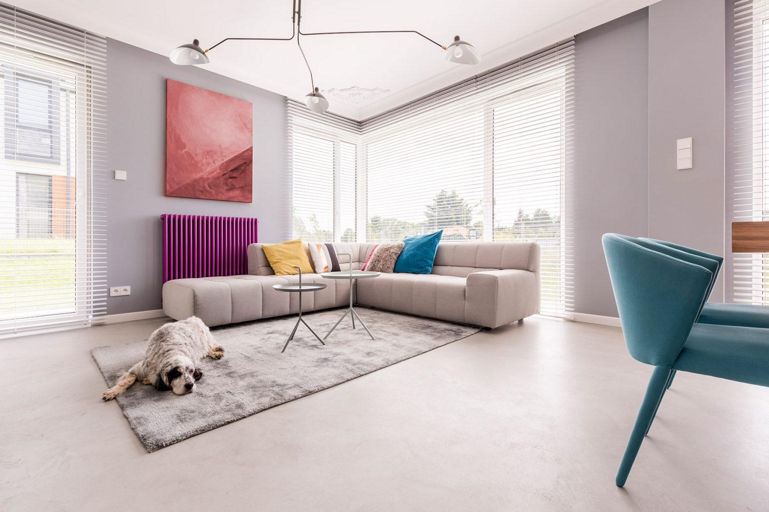 dog-in-a-house-interior-P6D5GAZ.jpg